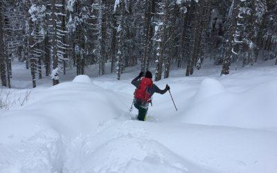 Schneeschuh Wanderung Bodental_Ogrisalm (1.596m)